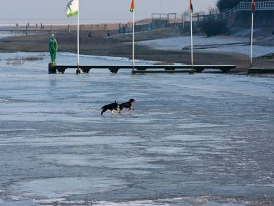 ST_20130124_Dangast_Fotos_Website_Neu_0043.jpg
